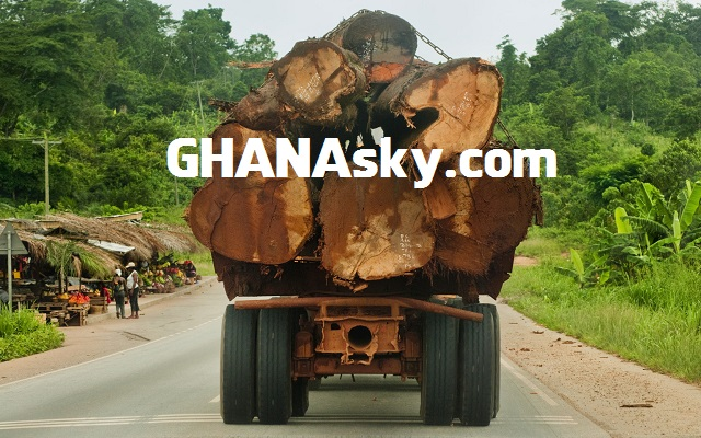Timber companies rob Ghana of $3.16bn