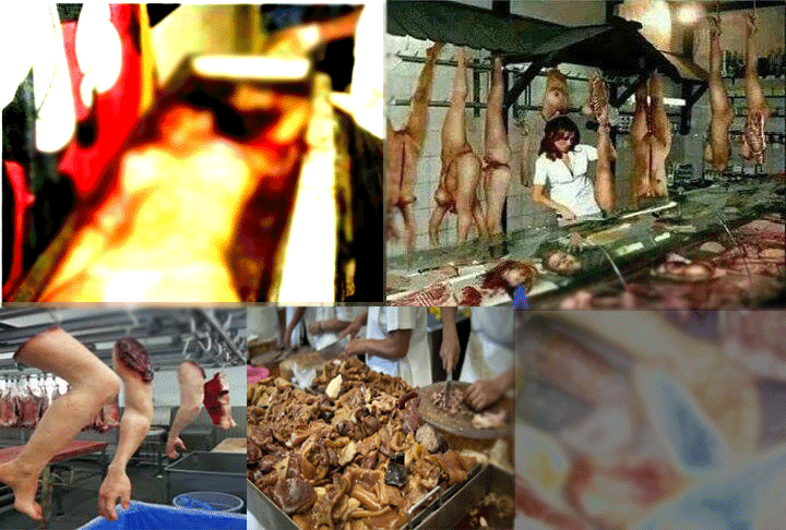 Human Meats Are Being Sold